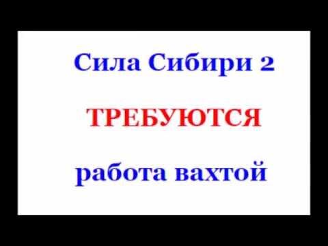 Сила Сибири 2 и работа вахтой в России вакансии до 2017