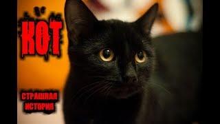 Страшные Истории - Кот