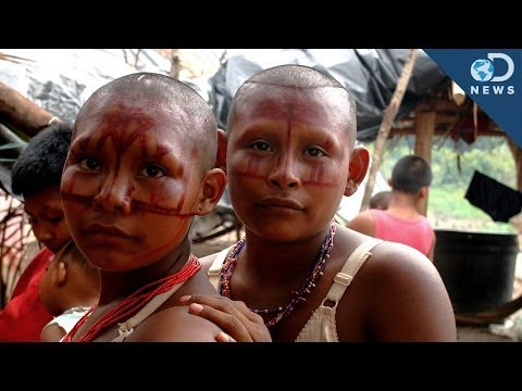 How Many Isolated Tribes Still Exist Today?