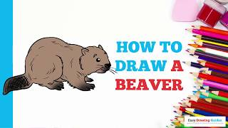 How to Draw a Beaver in a Few Easy Steps: Drawing Tutorial for Kids and Beginners