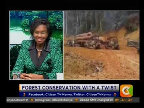 Citizen Extra: Forest conservation with a twist