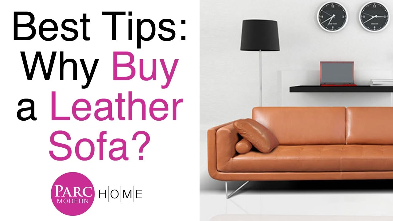 Insider Tips on Buying a Leather Sofa   Furniture   Parc ModernInsider Tips on Buying a Leather Sofa   Furniture   Parc Modern  . Modern Living Standard Furniture Victoria Bc. Home Design Ideas