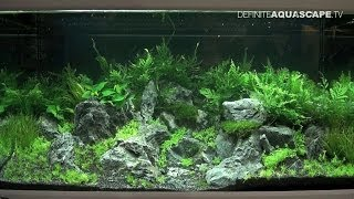 Aquarium Ideas - Planted Aquariums Of Heimtiermesse 2014, Hannover, Pt. 4