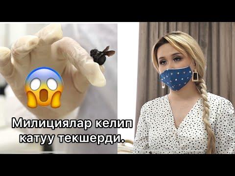 Асель Кадырбекованын салонун ТАРАКАН басып кетиптир....
