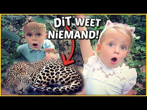 HET GEHEiM VAN DE DiERENTUiN 🐯 ( Burgers Zoo)   Bellinga Familie Vloggers #1427
