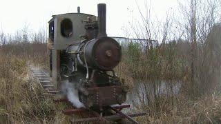 в Ленинградской области трое друзей запустили железную дорогу с самодельным паровозом
