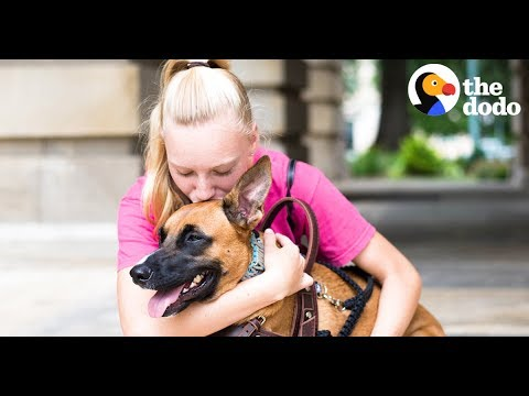 This Dog Stops His Mom's Panic Attacks | The Dodo Soulmates