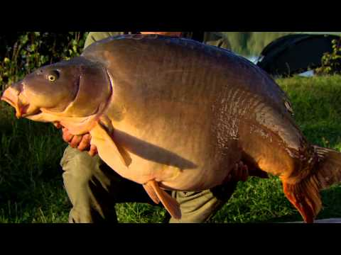 Korda - Carp, Tackle, Tactics & Tips Vol 5 Part 2 - 2012 Free Carp Fishing DVD