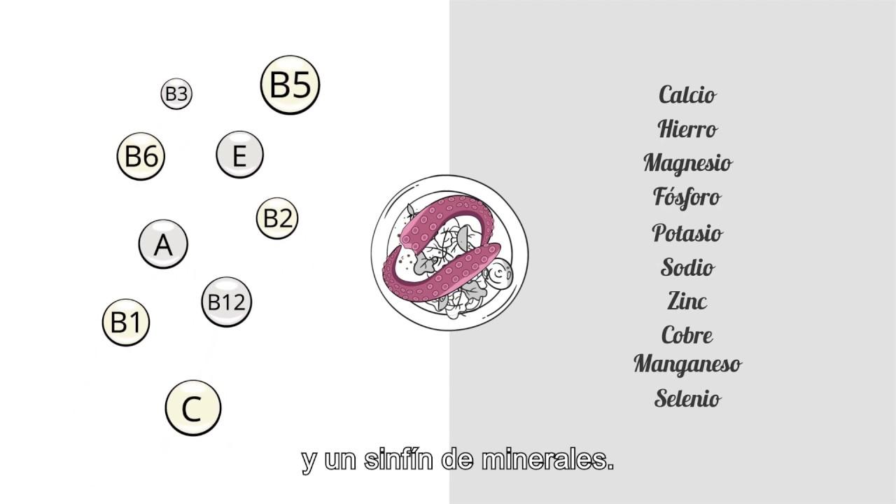 propiedades nutricionales de pulpo