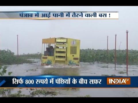 Punjab: Water bus to run at Harike water land in Amritsar