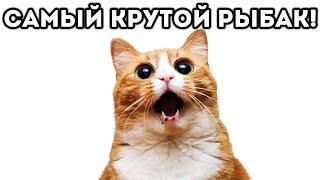 САМЫЙ КРУТОЙ РЫБАК! - Cat Goes Fishing