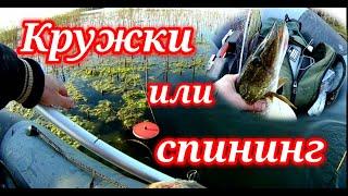 Кружки или спининг Рыбалка на щуку Шапсугское водохранилище