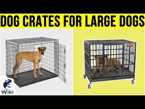 10 Best Dog Crates For Large Dogs 2019