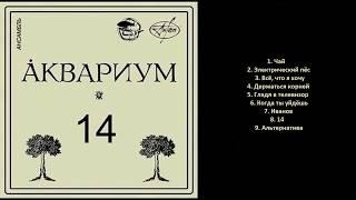 ÅКВАРИУМ Четырнадцать Bootleg