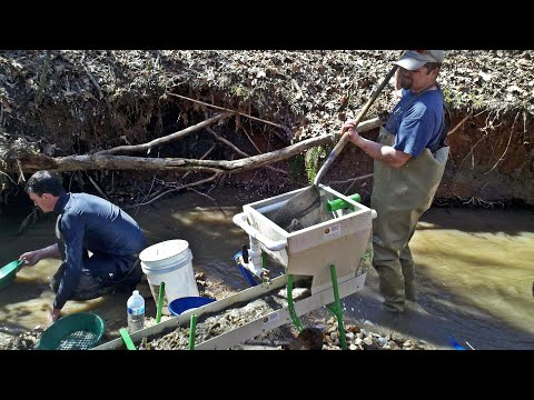 North Carolina Gold Prospecting - Highbanking Near An Old Placer Mine, Mercury Coated Au