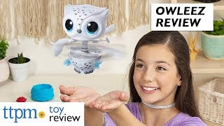 Owleez Flying Radio Control Owl Review from Spin Master
