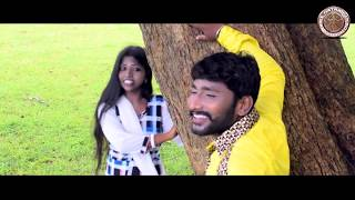 Download chattisgadhi विडिओ संग sangwari  संगवारी MP3 song and Music Video