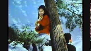 1985年CM ドギーマン 浅田美代子.