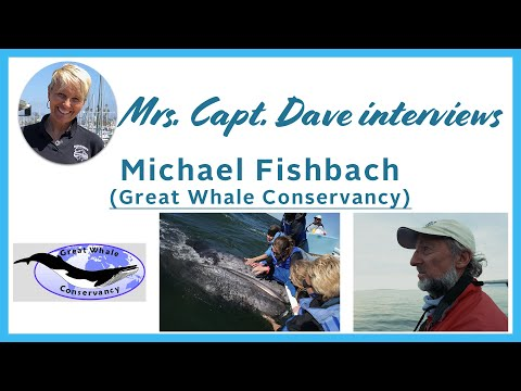 Michael Fishbach (Great Whale Conservancy) Shares Never-Before-Seen Gray Whale Event