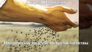 Андрей Шаповалов Пророческое видение во время молитвы