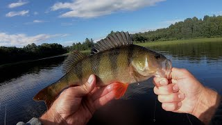 Вся рыба Ушла на Свал. Ловля щуки на спиннинг с лодки. Ловля окуня на джиг. Рыбалка на щуку.