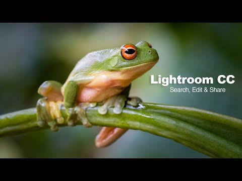 Lightroom CC - Search, Edit and Share - 3-minute makeover