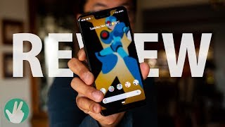 Pixel 3 XL Review: for the IG Boyfriend?