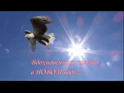 С годом Парящего Орла!Поздравление со Старым Новым годом! - Ржачные видео приколы