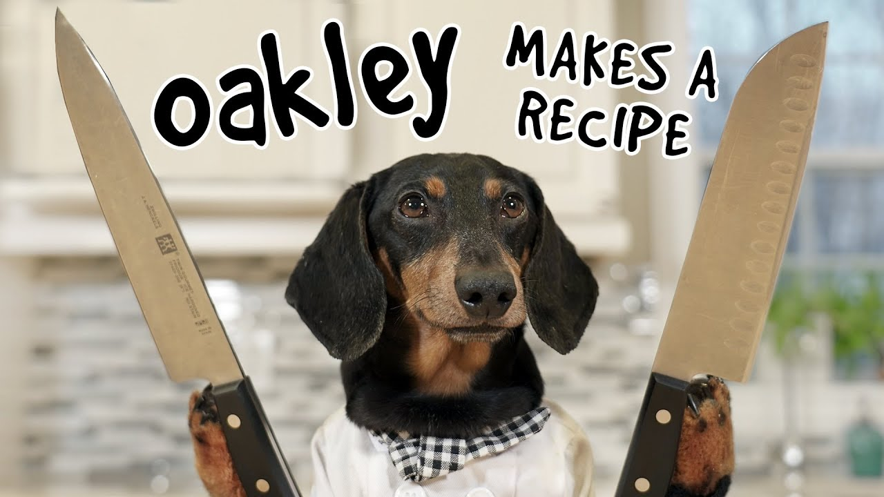 Download Ep 10. OAKLEY MAKES A RECIPE - What Could Go Wrong?!