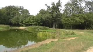 Hendon loop London jog