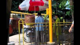 Amit Chaudhuri - All India Radio