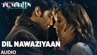TUM BIN 2 - Dil Nawaziyaan Chords and Lyrics
