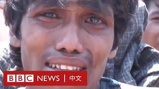 肺炎疫情:羅興亞難民海上漂流數月 靠喝海水維生- BBC News 中文