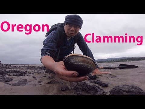 Oregon Clamming - catch and clean clams