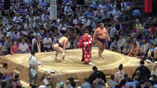 平成29年7月場所14日目取組結果一覧 (外部サイト:Sumo Reference) ht...