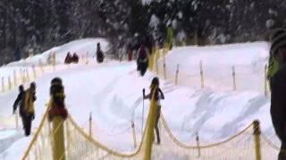 第83回全日本学生スキー選手権大会は2010年1月11日から1月17日まで長野...