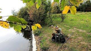 Бомбезная прикормка Фидерная рыбалка на озере