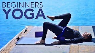 Beginners Yoga Class (Easy)