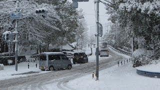 大阪府河内長野市大雪 2014年 (積雪約14cm)