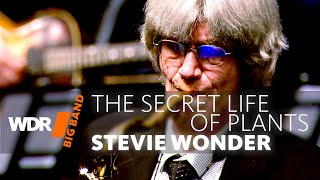 Bob Malach feat. by WDR BIG BAND - The Secret Life Of Plants