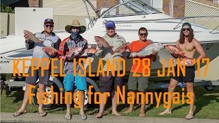 Keppel Island Nannygais Reef fishing around Keppel Island, Yeppoon QLD