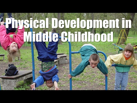 physical-development-in-middle-childhood