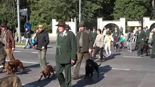 Hubertus Świętokrzyski w Kielcach. Parada i piknik  01.10.2017