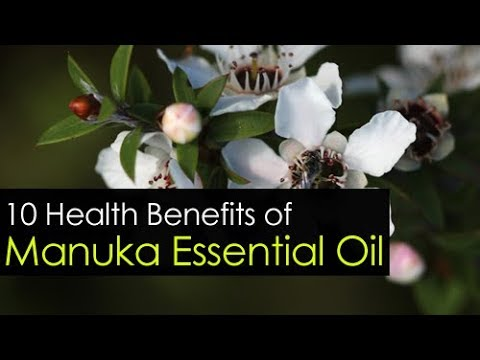 10-manuka-essential-oil-uses-and-benefits
