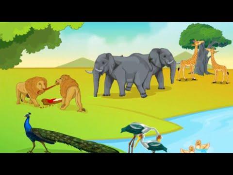 ICSE Class 9 Biology / Five Kingdom Classification 4 - The Animal Kingdom