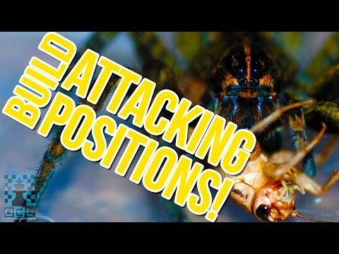 Build Attacking Positions: STRONG Chess Attacks!