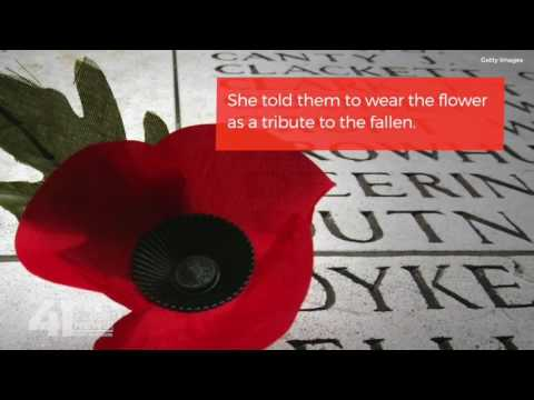 Meaning behind the red poppy and its connections to wwi youtube meaning behind the red poppy and its connections to wwi mightylinksfo