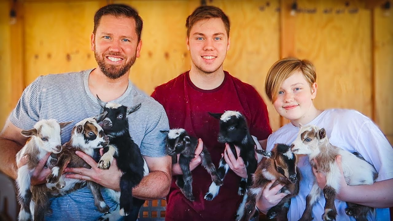 Download Which BABY GOATS will we keep on our FARM?!