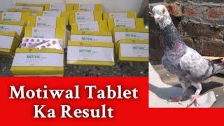 Motiwal Tablet Ka Result || Kabootar Udane ki Medicine || 😔😔