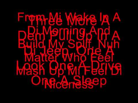 Gaza Slim - Lite Di Weed with Lyrics (Bankrobber Riddim)
